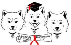 Dog training classes Lisa M by Joy Rahat
